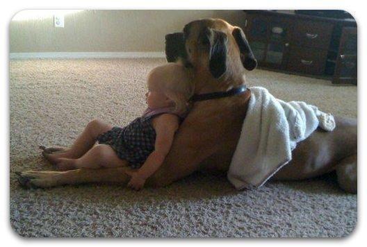 Величайшая целебная терапия – это дружба и любовь.